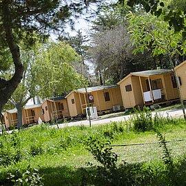 camping rana verde