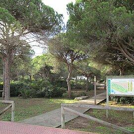 Parque periurbano La Barrosa