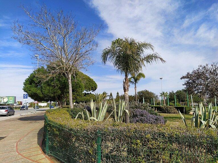 Parque Público Coto La Campa