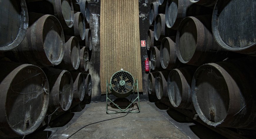 Bodega Cooperativa - Unión de viticultores chiclaneros