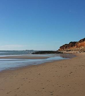Foto sombrilla playa
