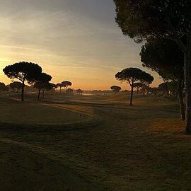 Hills Golf